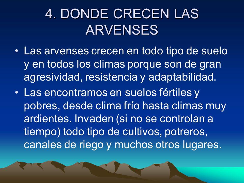 4. DONDE CRECEN LAS ARVENSES Las arvenses crecen en todo tipo de suelo y en todos los climas porque son de gran agresividad, resistencia y adaptabilid
