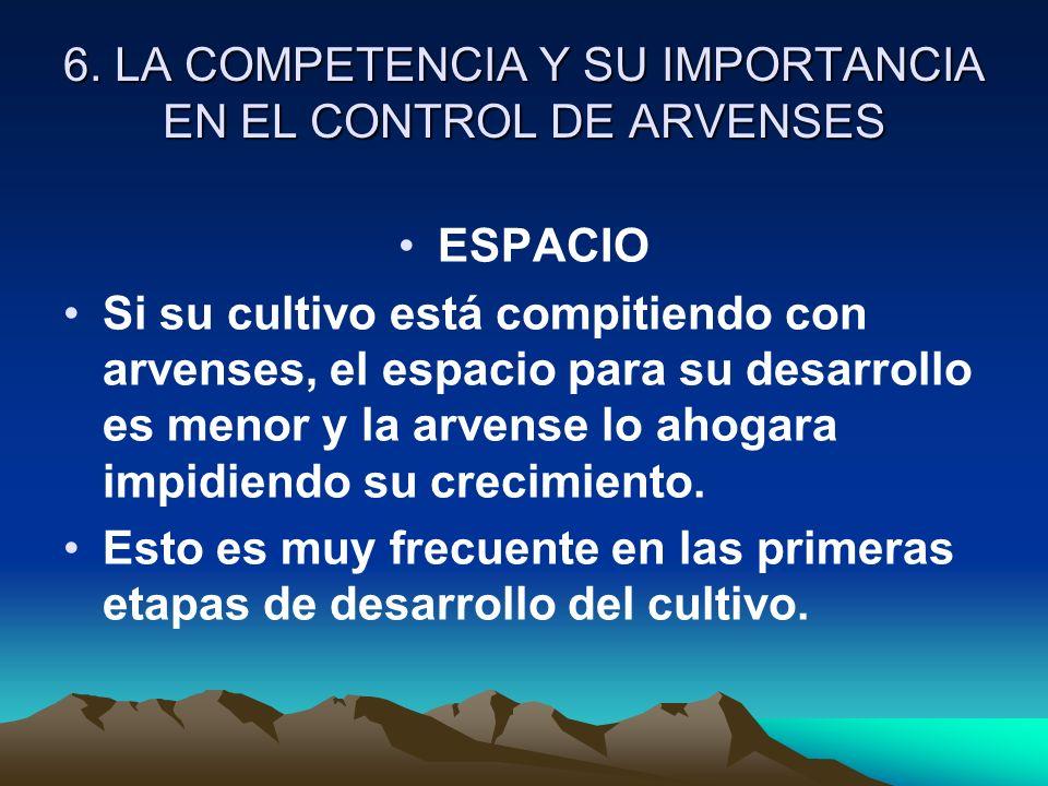 6. LA COMPETENCIA Y SU IMPORTANCIA EN EL CONTROL DE ARVENSES ESPACIO Si su cultivo está compitiendo con arvenses, el espacio para su desarrollo es men