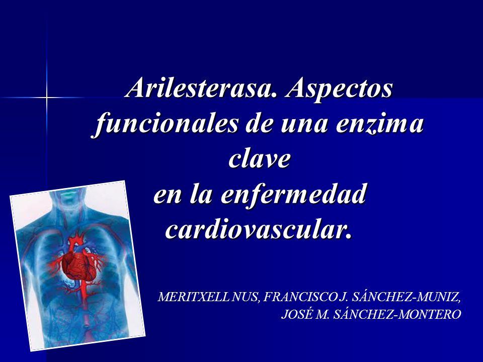 Arilesterasa. Aspectos funcionales de una enzima clave en la enfermedad cardiovascular. MERITXELL NUS, FRANCISCO J. SÁNCHEZ-MUNIZ, JOSÉ M. SÁNCHEZ-MON