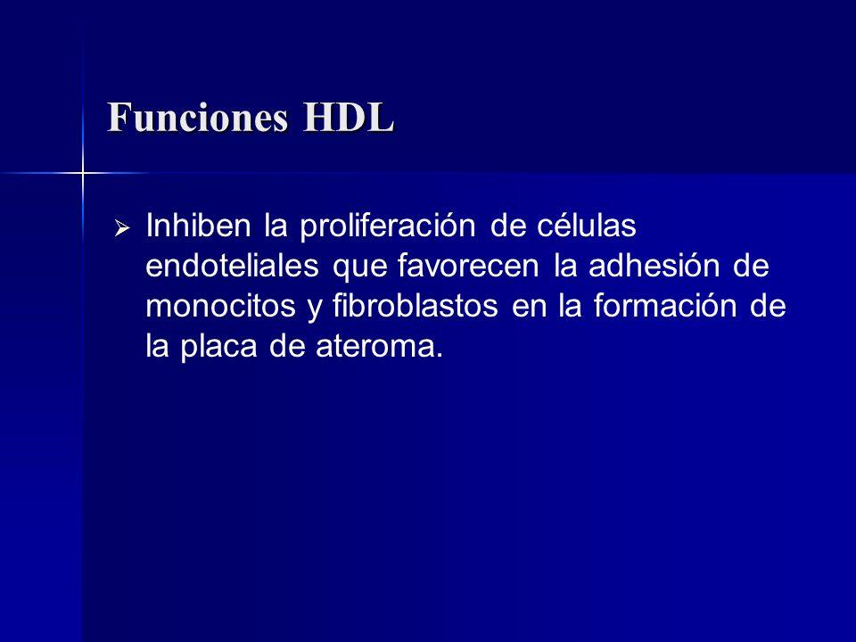 Funciones HDL Inhiben la proliferación de células endoteliales que favorecen la adhesión de monocitos y fibroblastos en la formación de la placa de at