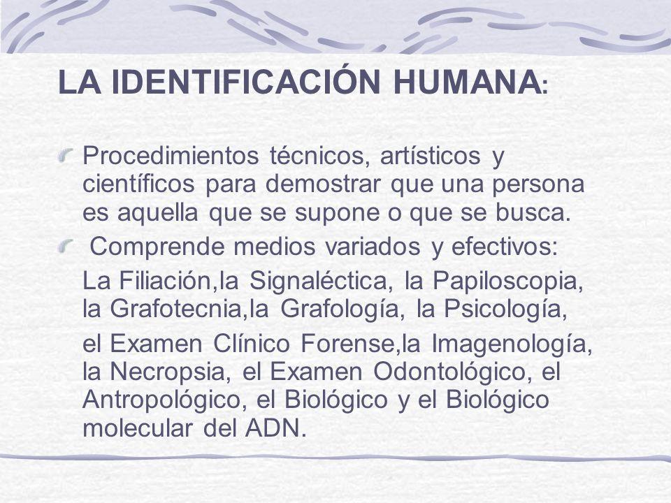 LA IDENTIFICACIÓN HUMANA : Procedimientos técnicos, artísticos y científicos para demostrar que una persona es aquella que se supone o que se busca. C