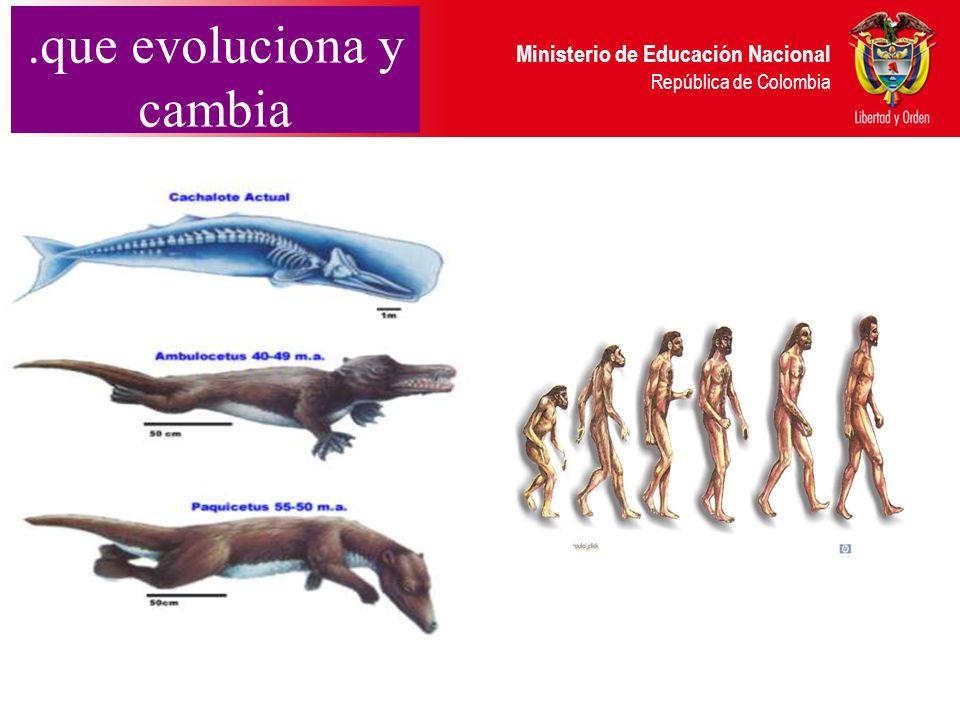 Ministerio de Educación Nacional República de Colombia.que evoluciona y cambia