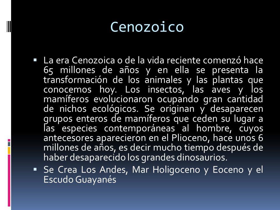 Cenozoico La era Cenozoica o de la vida reciente comenzó hace 65 millones de años y en ella se presenta la transformación de los animales y las planta