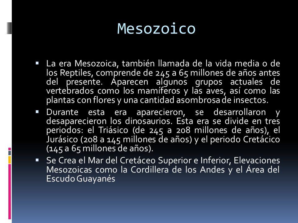 Mesozoico La era Mesozoica, también llamada de la vida media o de los Reptiles, comprende de 245 a 65 millones de años antes del presente. Aparecen al