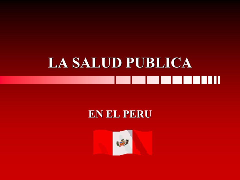 LA SALUD PUBLICA EN EL PERU