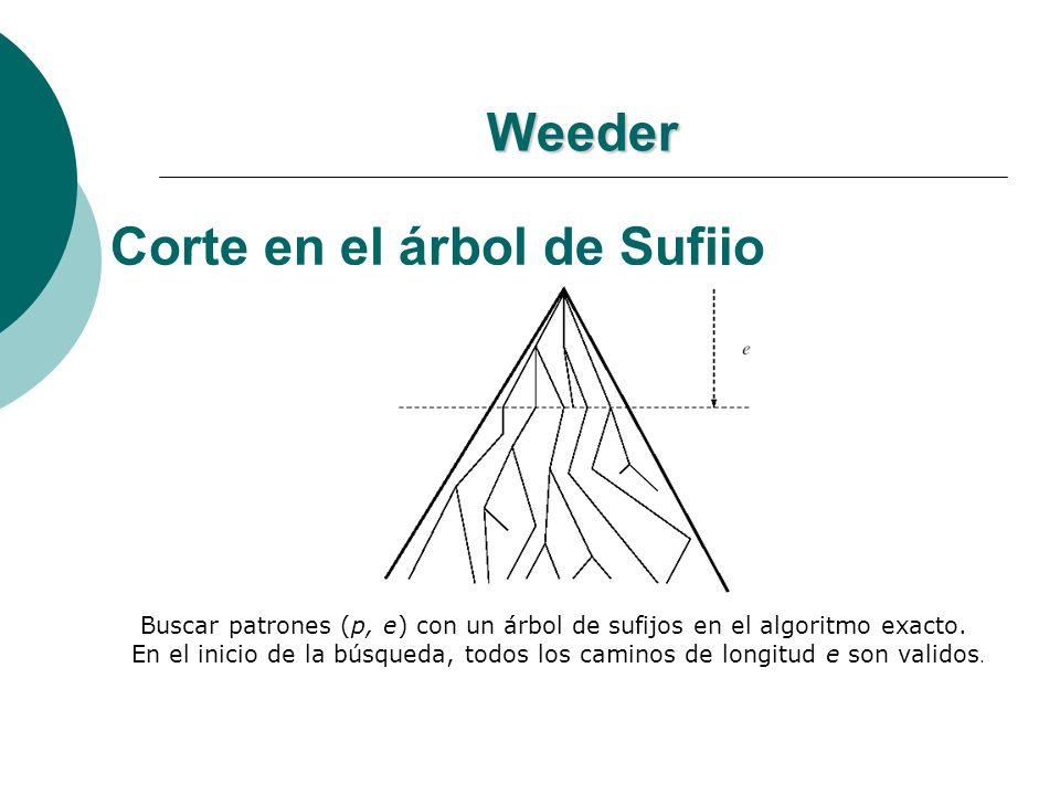 Weeder Corte en el árbol de Sufijo Buscar patrones (p, e) con un árbol de sufijos en el algoritmo exacto. En el inicio de la búsqueda, todos los camin
