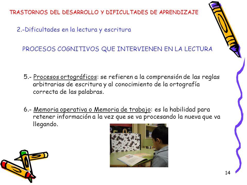 14 5.- Procesos ortográficos: se refieren a la comprensión de las reglas arbitrarias de escritura y al conocimiento de la ortografía correcta de las p