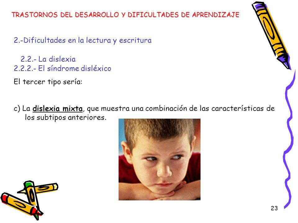 23 TRASTORNOS DEL DESARROLLO Y DIFICULTADES DE APRENDIZAJE 2.-Dificultades en la lectura y escritura 2.2.- La dislexia 2.2.2.- El síndrome disléxico E