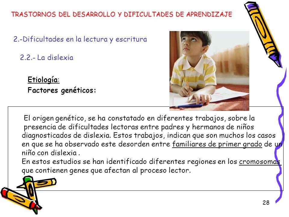 28 Etiología: Factores genéticos: TRASTORNOS DEL DESARROLLO Y DIFICULTADES DE APRENDIZAJE 2.-Dificultades en la lectura y escritura 2.2.- La dislexia