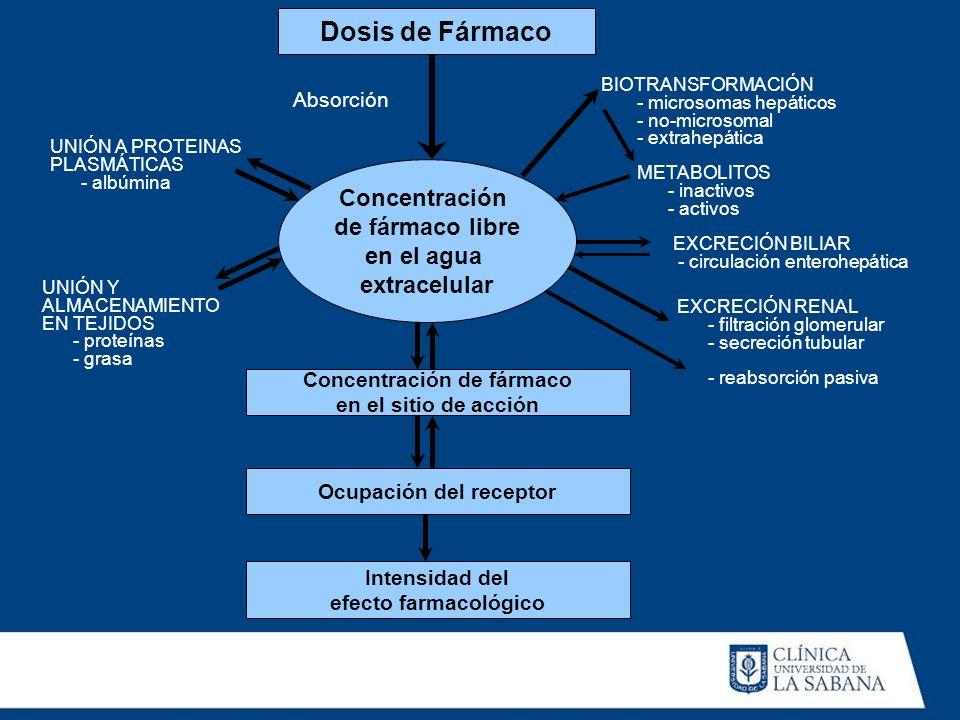 Dosis de Fármaco Concentración de fármaco libre en el agua extracelular Concentración de fármaco en el sitio de acción Ocupación del receptor Intensid