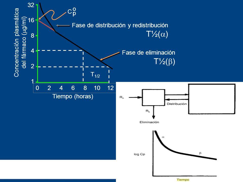 0 2 4 6 8 10 12 32 16 8 4 2 1 C opop Tiempo (horas) Concentración plasmática del fármaco ( g/ml) T 1/2 Fase de distribución y redistribución T½( ) Fas