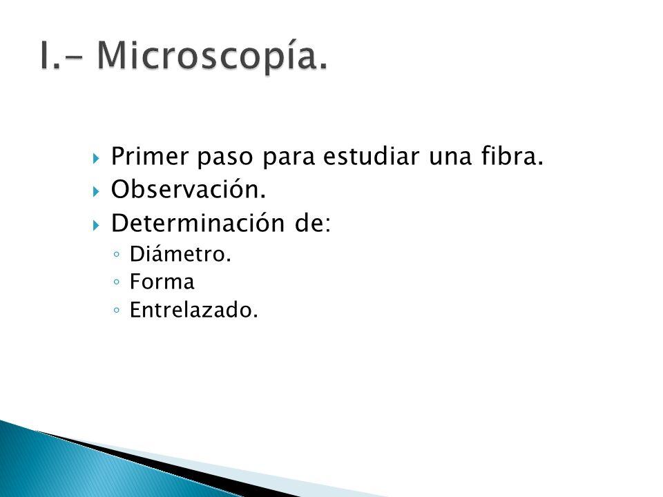 Primer paso para estudiar una fibra. Observación. Determinación de: Diámetro. Forma Entrelazado.
