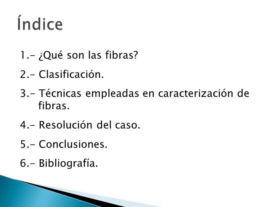 1.- ¿Qué son las fibras? 2.- Clasificación. 3.- Técnicas empleadas en caracterización de fibras. 4.- Resolución del caso. 5.- Conclusiones. 6.- Biblio