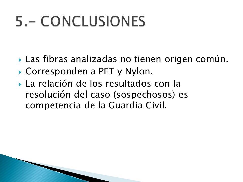 Las fibras analizadas no tienen origen común. Corresponden a PET y Nylon. La relación de los resultados con la resolución del caso (sospechosos) es co
