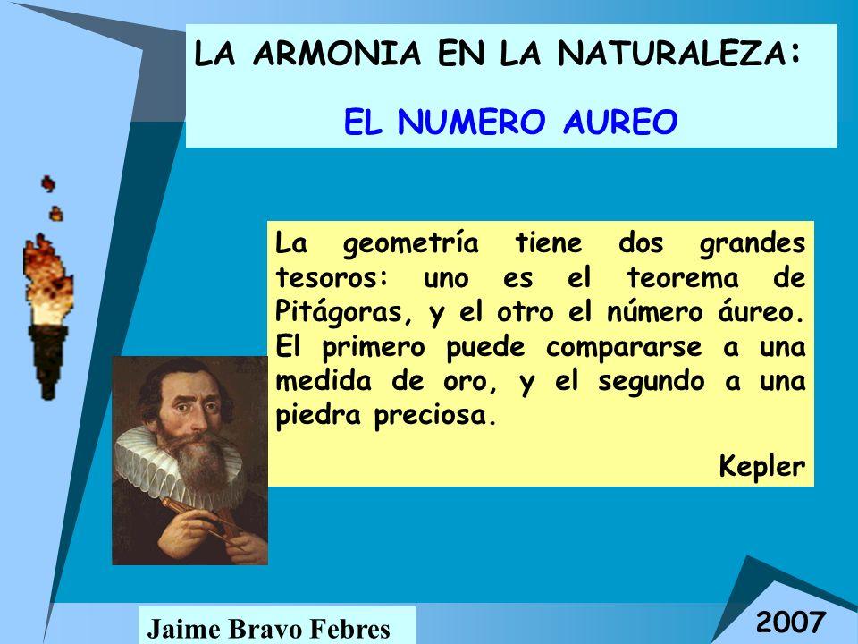 LA ARMONIA EN LA NATURALEZA : EL NUMERO AUREO Jaime Bravo Febres 2007 La geometría tiene dos grandes tesoros: uno es el teorema de Pitágoras, y el otr