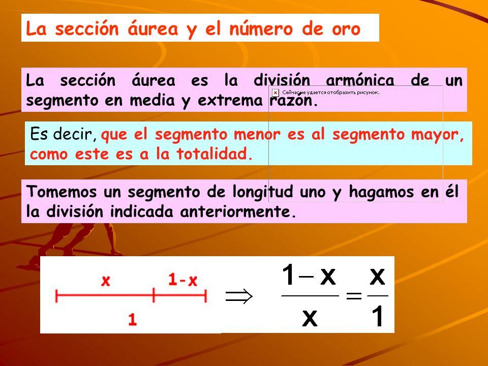 La sección áurea y el número de oro La sección áurea es la división armónica de un segmento en media y extrema razón. Es decir, que el segmento menor