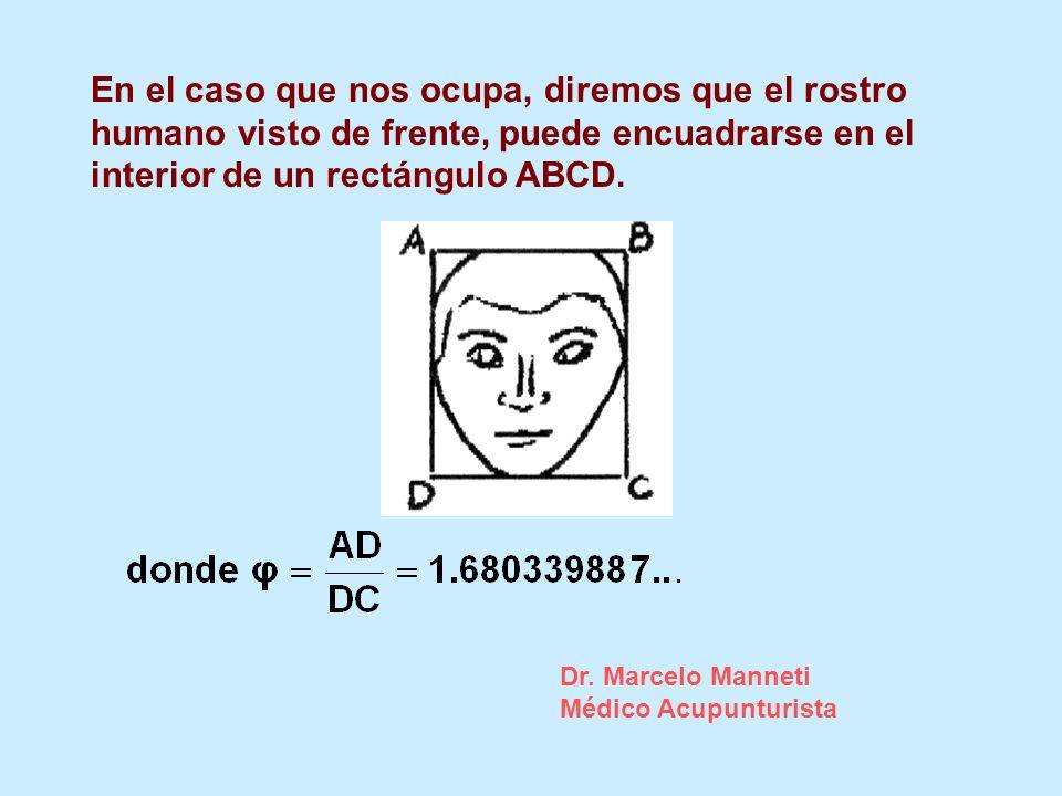 En el caso que nos ocupa, diremos que el rostro humano visto de frente, puede encuadrarse en el interior de un rectángulo ABCD. Dr. Marcelo Manneti Mé