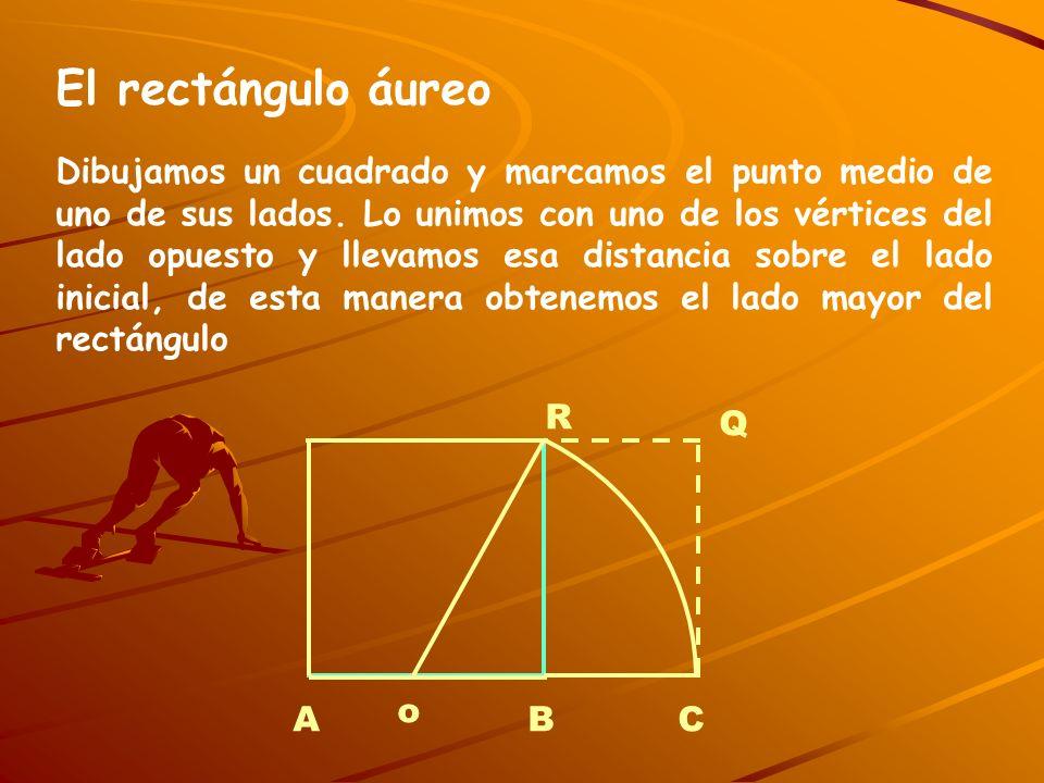 El rectángulo áureo Dibujamos un cuadrado y marcamos el punto medio de uno de sus lados. Lo unimos con uno de los vértices del lado opuesto y llevamos