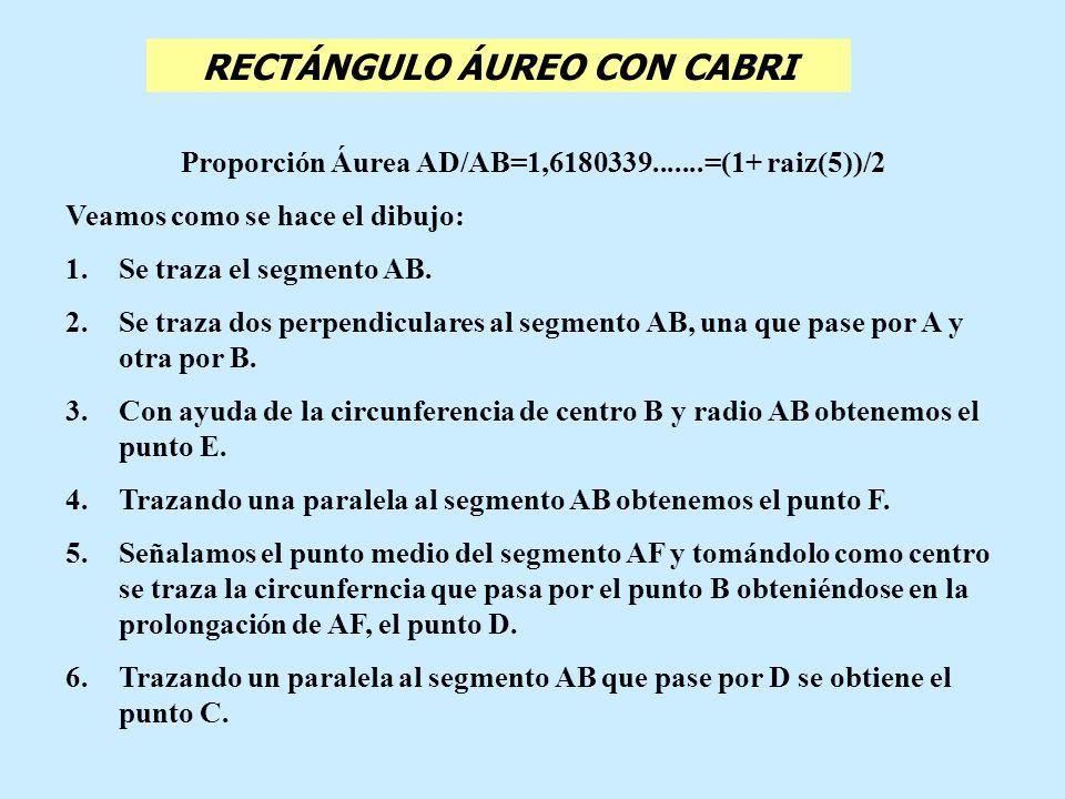 Proporción Áurea AD/AB=1,6180339.......=(1+ raiz(5))/2 Veamos como se hace el dibujo: 1.Se traza el segmento AB. 2.Se traza dos perpendiculares al seg