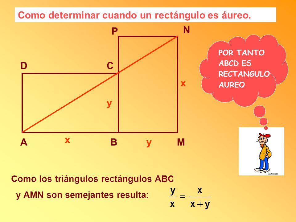 Como determinar cuando un rectángulo es áureo. AB CD x y M N P y x Como los triángulos rectángulos ABC y AMN son semejantes resulta: POR TANTO ABCD ES