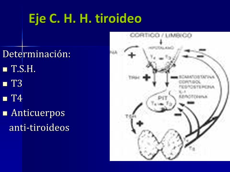 Eje C. H. H. tiroideo Determinación: T.S.H. T.S.H. T3 T3 T4 T4 Anticuerpos Anticuerpos anti-tiroideos anti-tiroideos