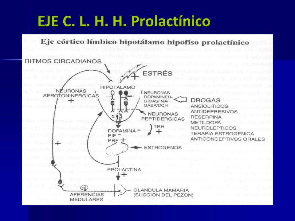 EJE C. L. H. H. Prolactínico Eje prola Eje prola