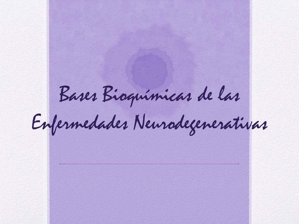 Conclusiones Las enfermedades neurodegenerativas son llamadas proteinopatias porque su origen ocurre en la acumulación de alguna proteína y su eliminación depende de varios sistemas de desintegración proteica