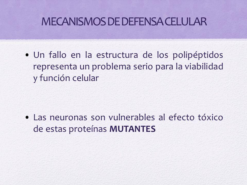 Enfermedades asociadas a fallo en el sistema autofagolisosoma Ataxia espinocerebelar Enfermedad de Parkinson familiar ( sinucleinopatías) Demencia frontotemporal