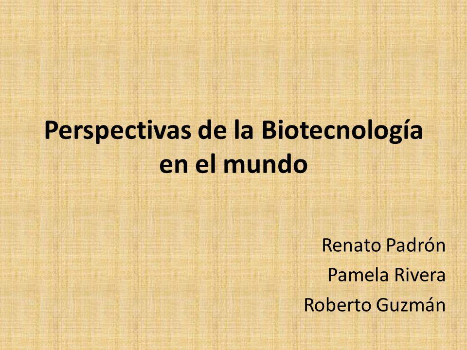 Perspectivas de la Biotecnología en el mundo Renato Padrón Pamela Rivera Roberto Guzmán