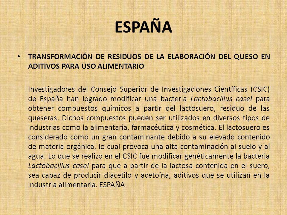 ESPAÑA TRANSFORMACIÓN DE RESIDUOS DE LA ELABORACIÓN DEL QUESO EN ADITIVOS PARA USO ALIMENTARIO Investigadores del Consejo Superior de Investigaciones