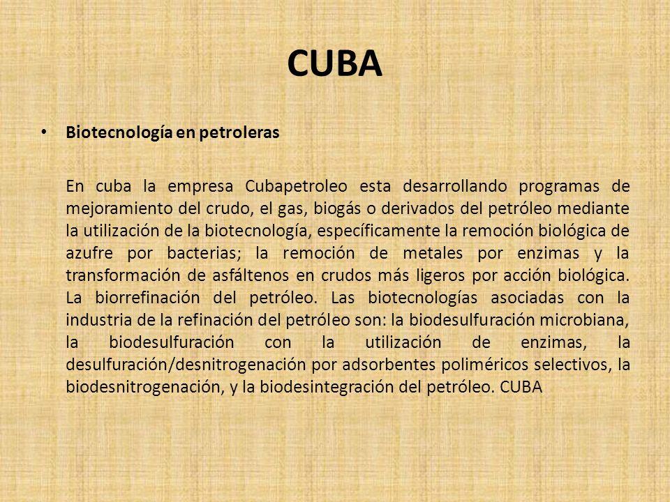 CUBA Biotecnología en petroleras En cuba la empresa Cubapetroleo esta desarrollando programas de mejoramiento del crudo, el gas, biogás o derivados de