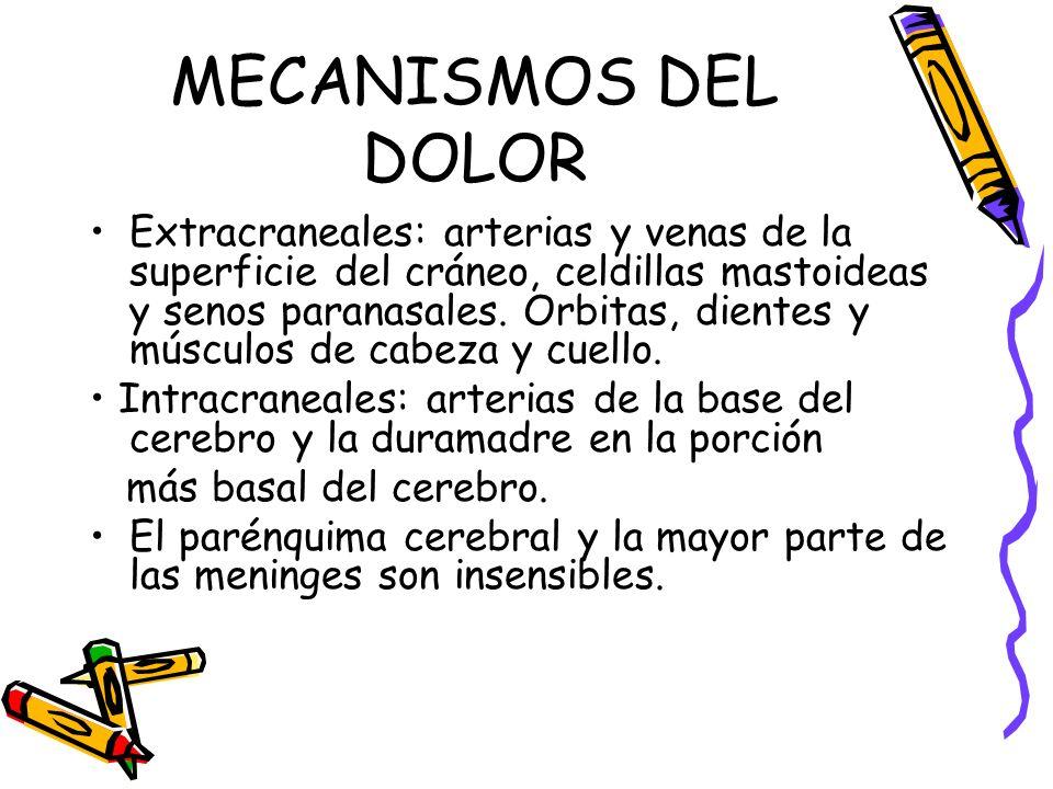 MECANISMOS DEL DOLOR Extracraneales: arterias y venas de la superficie del cráneo, celdillas mastoideas y senos paranasales. Orbitas, dientes y múscul