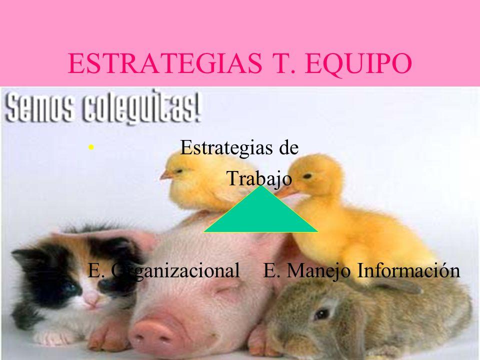 ESTRATEGIAS T. EQUIPO Estrategias de Trabajo E. Organizacional E. Manejo Información