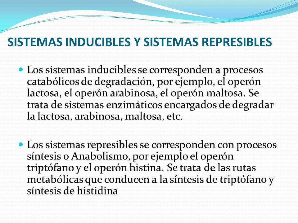 SISTEMAS INDUCIBLES Y SISTEMAS REPRESIBLES Los sistemas inducibles se corresponden a procesos catabólicos de degradación, por ejemplo, el operón lacto