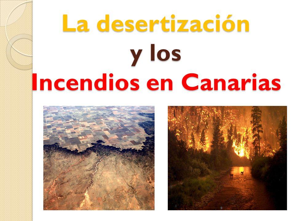 La desertización y los Incendios en Canarias