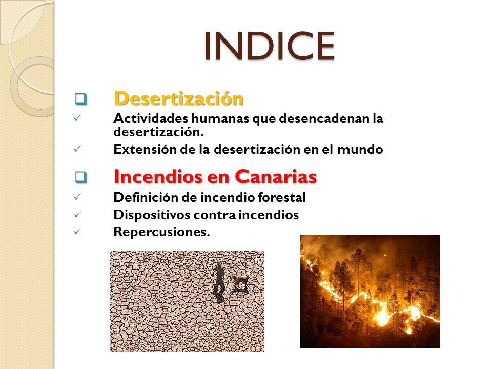 INDICE Desertización Desertización Actividades humanas que desencadenan la desertización. Extensión de la desertización en el mundo Incendios en Canar