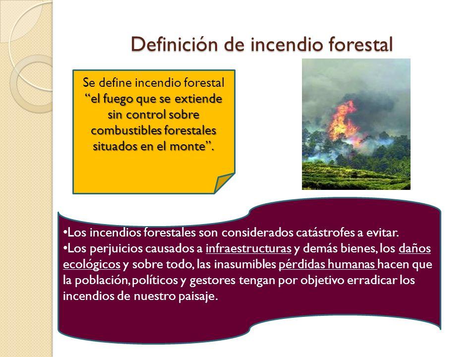 Definición de incendio forestal el fuego que se extiende sin control sobre combustibles forestales situados en el monte. Se define incendio forestal e