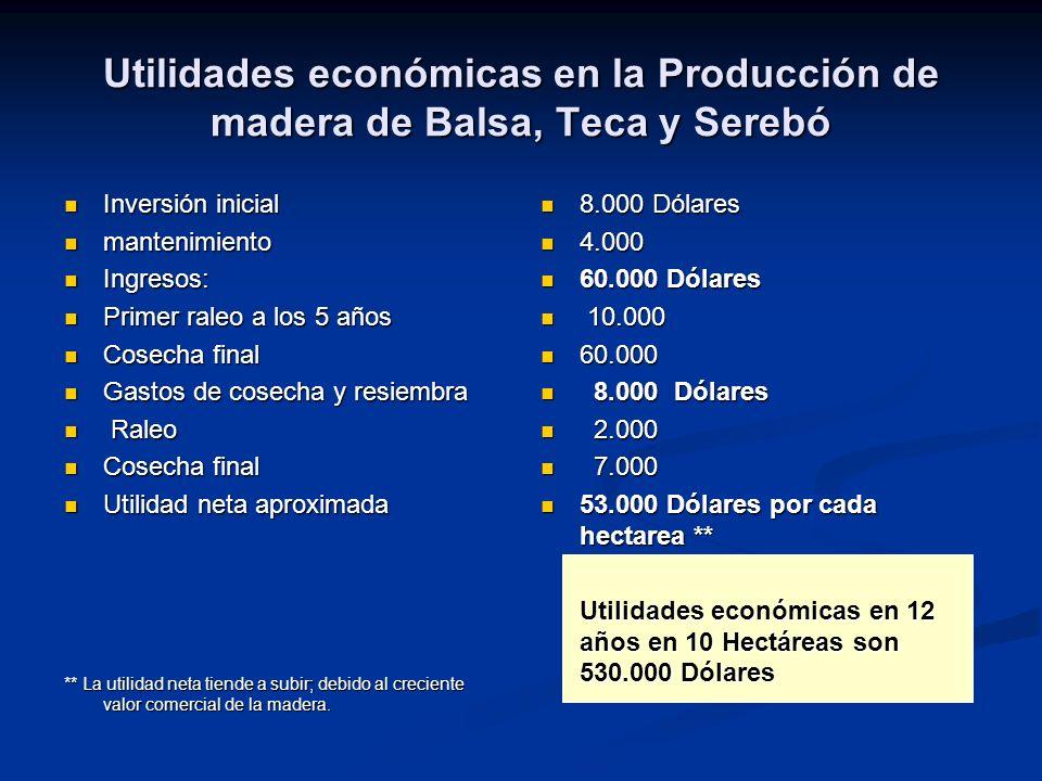 Utilidades económicas en la Producción de madera de Balsa, Teca y Serebó Inversión inicial Inversión inicial mantenimiento mantenimiento Ingresos: Ing