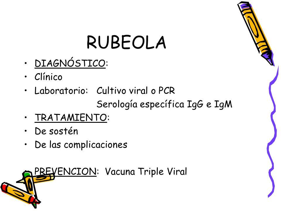 RUBEOLA DIAGNÓSTICO: Clínico Laboratorio: Cultivo viral o PCR Serología específica IgG e IgM TRATAMIENTO: De sostén De las complicaciones PREVENCION: