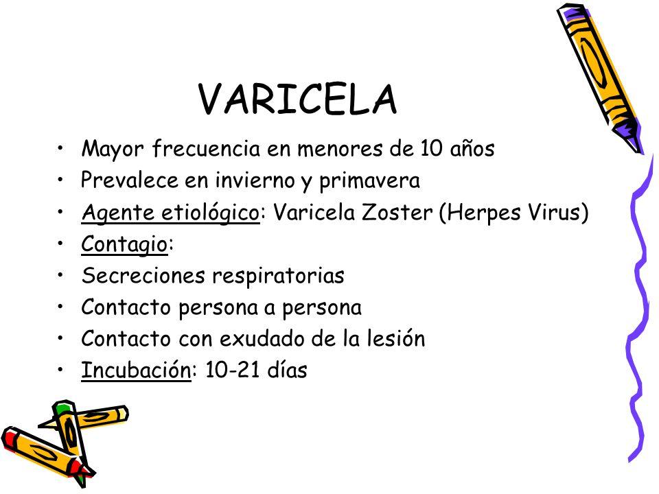 VARICELA Mayor frecuencia en menores de 10 años Prevalece en invierno y primavera Agente etiológico: Varicela Zoster (Herpes Virus) Contagio: Secrecio