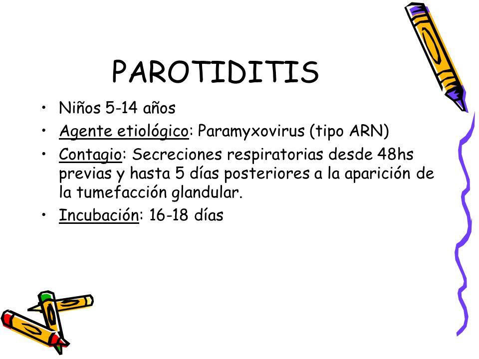 PAROTIDITIS Niños 5-14 años Agente etiológico: Paramyxovirus (tipo ARN) Contagio: Secreciones respiratorias desde 48hs previas y hasta 5 días posterio