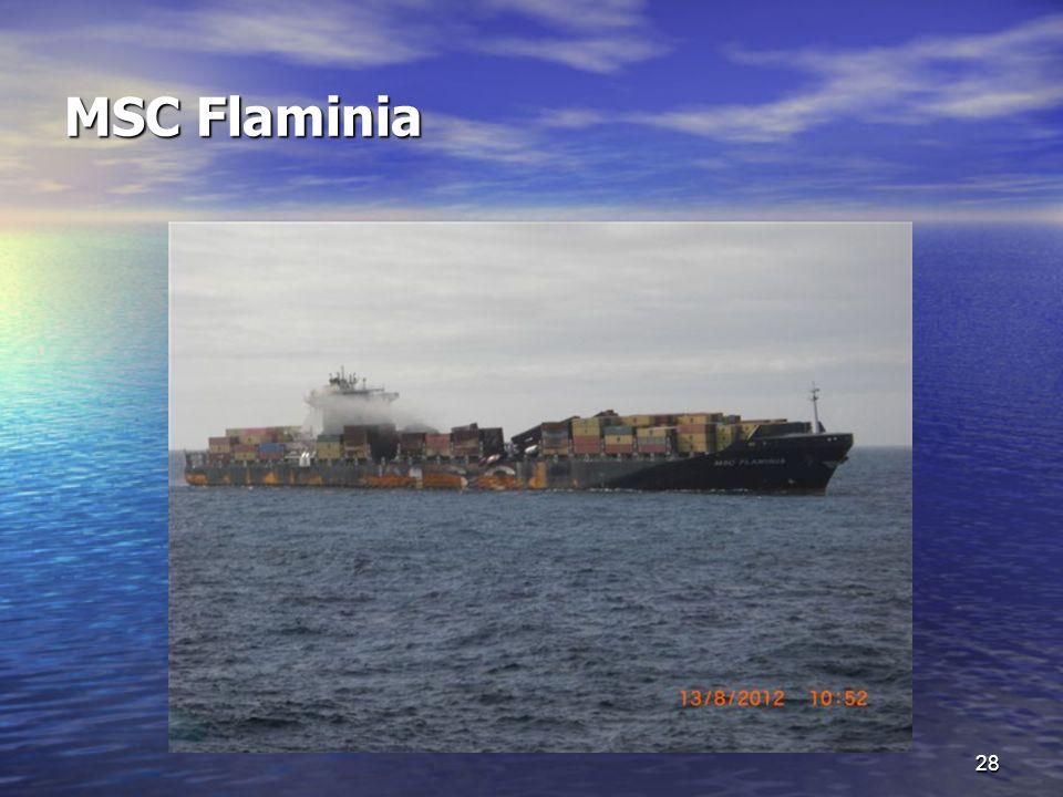 MSC Flaminia 28