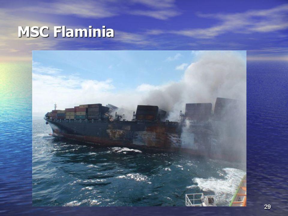 MSC Flaminia 29