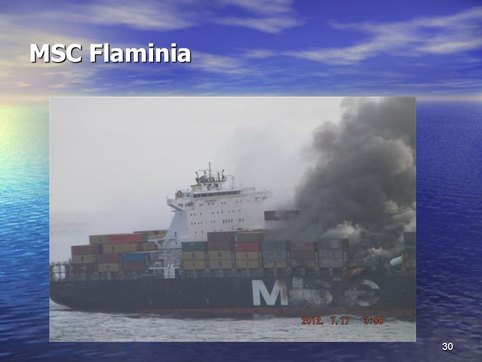 MSC Flaminia 30