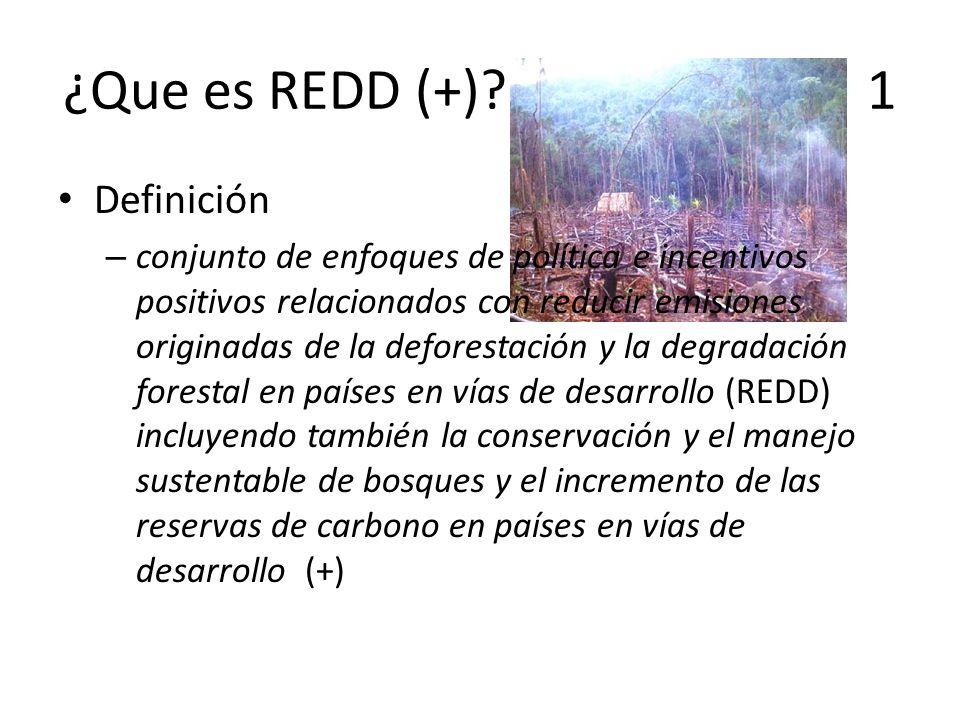 ¿Que es REDD (+)? 1 Definición – conjunto de enfoques de política e incentivos positivos relacionados con reducir emisiones originadas de la deforesta