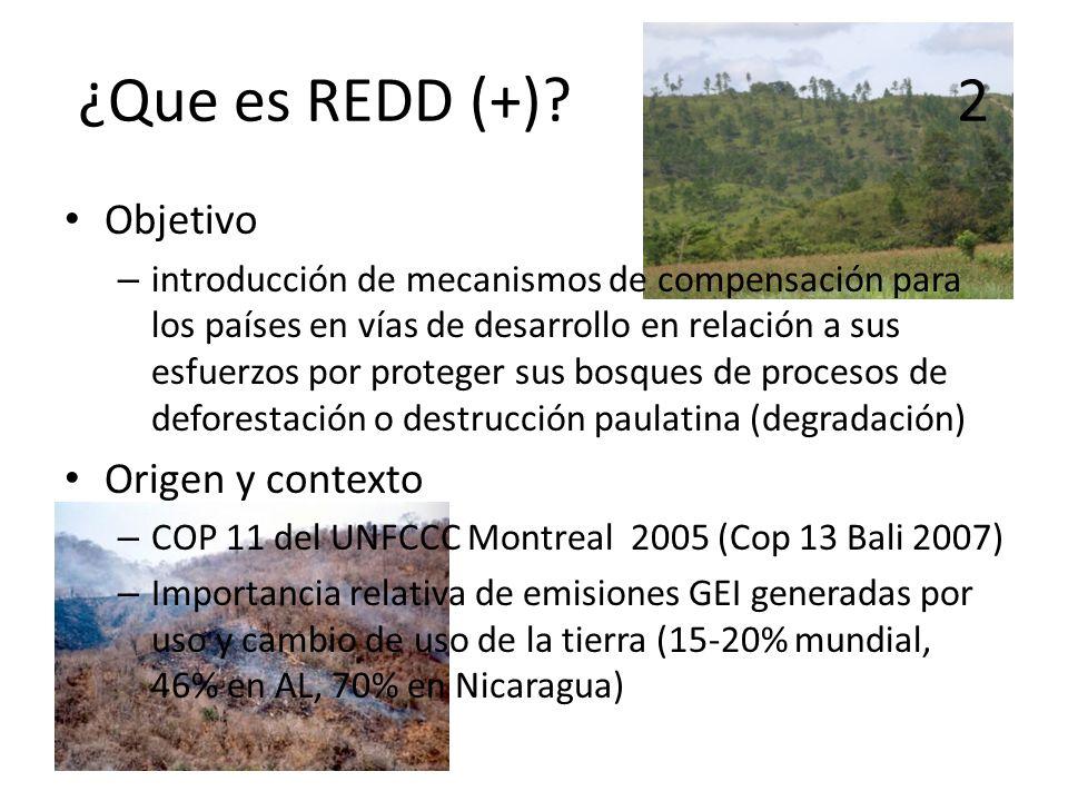 Objetivo – introducción de mecanismos de compensación para los países en vías de desarrollo en relación a sus esfuerzos por proteger sus bosques de pr