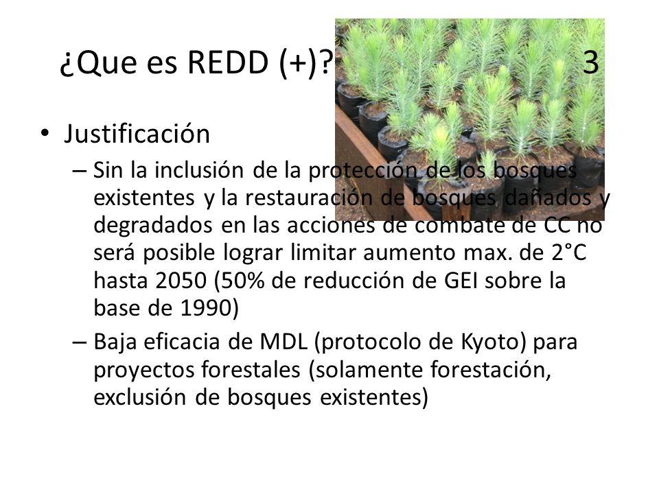 ¿Que es REDD (+)? 3 Justificación – Sin la inclusión de la protección de los bosques existentes y la restauración de bosques dañados y degradados en l