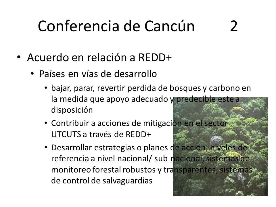 Conferencia de Cancún 2 Acuerdo en relación a REDD+ Países en vías de desarrollo bajar, parar, revertir perdida de bosques y carbono en la medida que