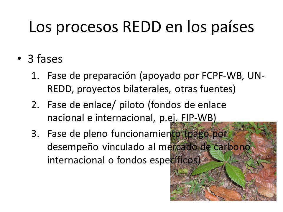 Los procesos REDD en los países 3 fases 1.Fase de preparación (apoyado por FCPF-WB, UN- REDD, proyectos bilaterales, otras fuentes) 2.Fase de enlace/