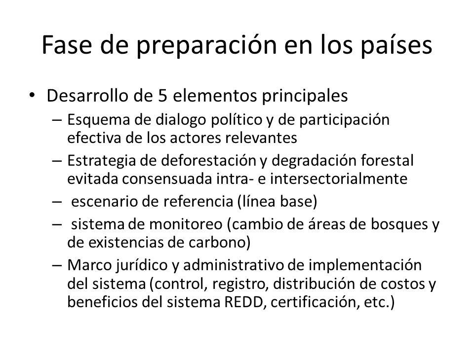 Fase de preparación en los países Desarrollo de 5 elementos principales – Esquema de dialogo político y de participación efectiva de los actores relev